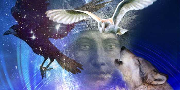 A Peruvian Shaman Shares 6 Spirit Animal Allies for Guidance