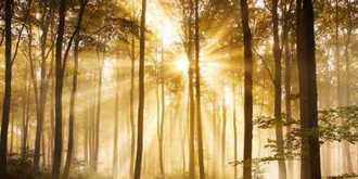 Shamanism: An Ancient Universal Spiritual Practice