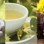 Cold or Allergies? Top Medicinal Plants to Soothe Your Respiratory System