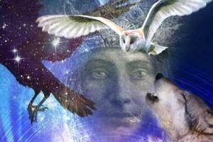 A Peruvian Shaman Shares 6 Spirit Animal Allies for Guidance, Healing & Wisdom