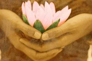 Hakomi & the Essential Self: Healing Through Mindfulness, Presence & Embodied Psychology