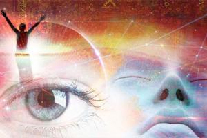 Want to Time Travel & Glimpse the Future? Discover Quantum Dreaming